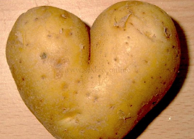 анальная пробка из картошки